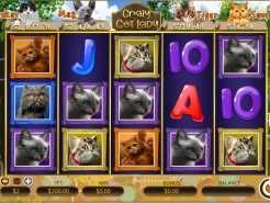Crazy Cat Lady Slots